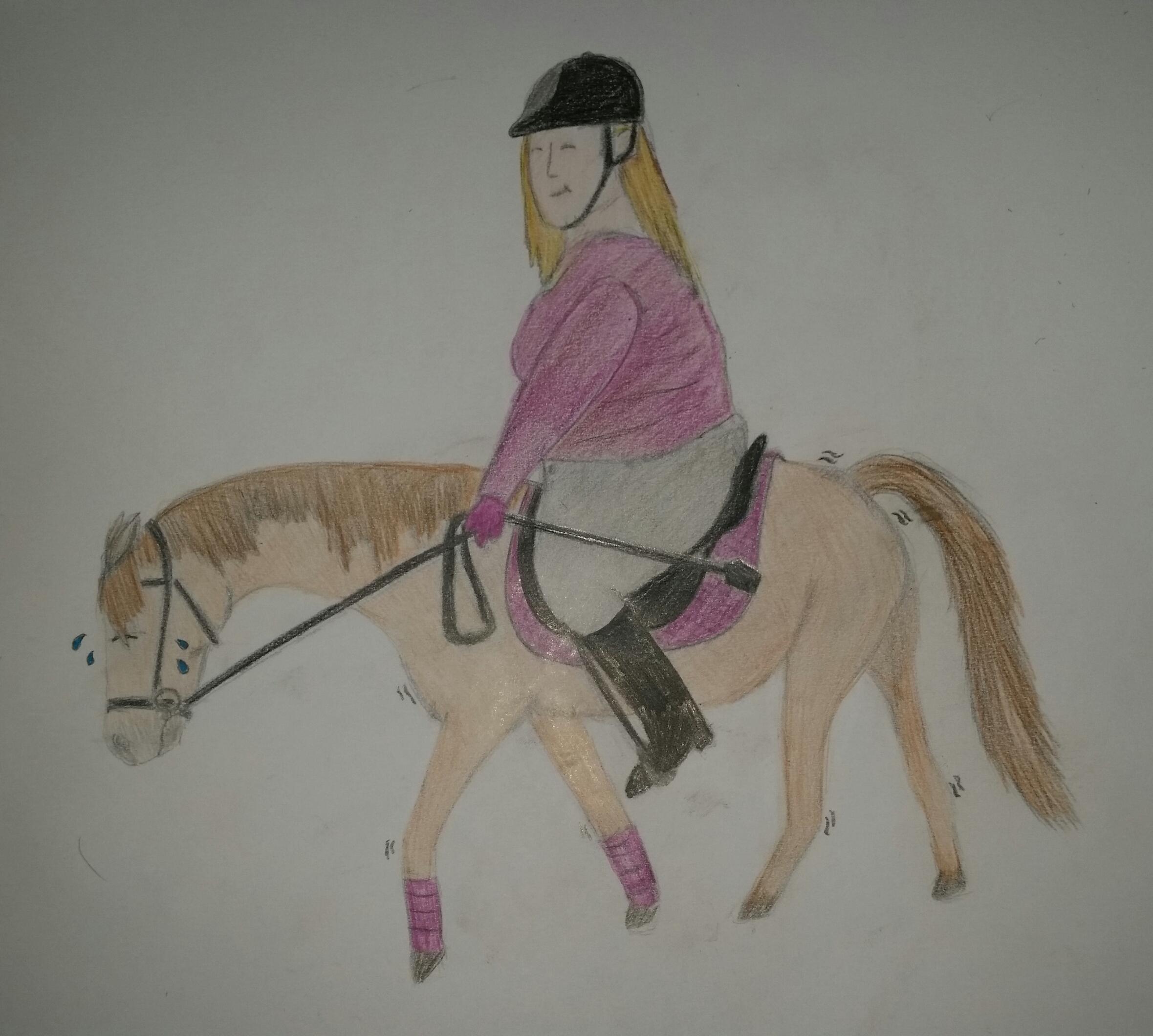 Schwerwiegende Angelegenheit Kann Mein Pferd Mich Noch Er