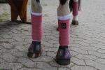 BR / HHS / Old Pink-Burgundy