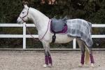 BR / HHS / Purple-Silver