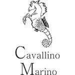 Cavallino Marino Verona