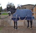 Horse Friends / Chamonix 300 Navy-Creme