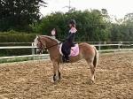 Ponyschwester / Holo Rosa