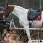 Riali-t / Stars Schokobraun-Orange