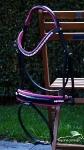 Equine Concept / Trense Valentina Schwarz-Pink