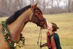 Harry's Horse / Squarefit Braun