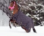 Outdoordecken / Imperial Riding
