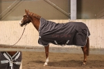 Outdoordecken / Horseware Amigo Bravo