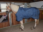 Outdoordecken / Horseware Rhino Original